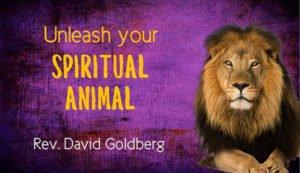 David-Goldberg-Banner-For-Web-Sun-May-29