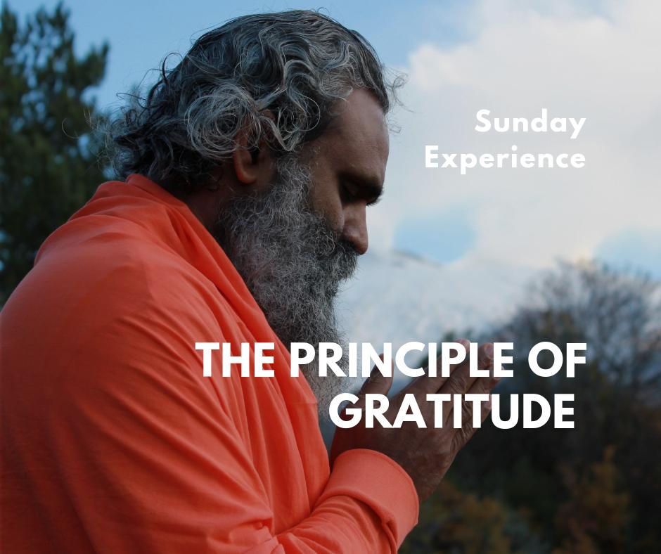 The Principle of Gratitude